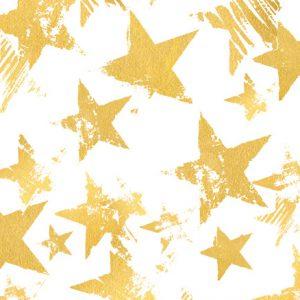 "NIEUW: ""Be a star"" -kamp zomer 2020"